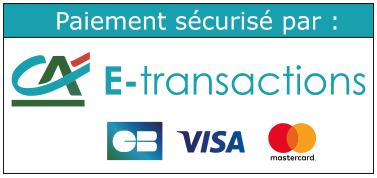 ca e-transactions cb visa mastercard